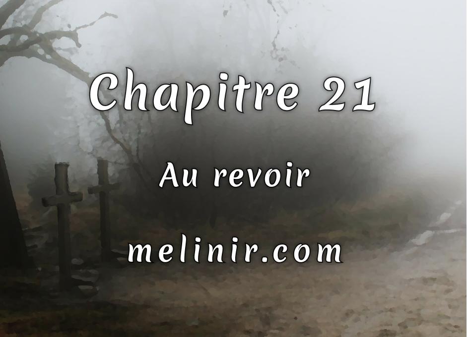 Melinir Tome 1 - Chapitre 21 - Au revoir