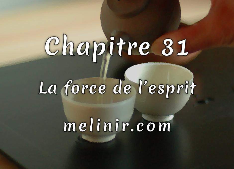 Melinir Tome 1 - Chapitre 31 - La force de l'esprit