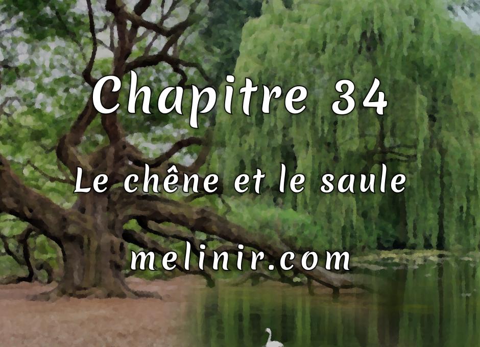 Melinir Tome 1 - Chapitre 34 - Le chêne et le saule