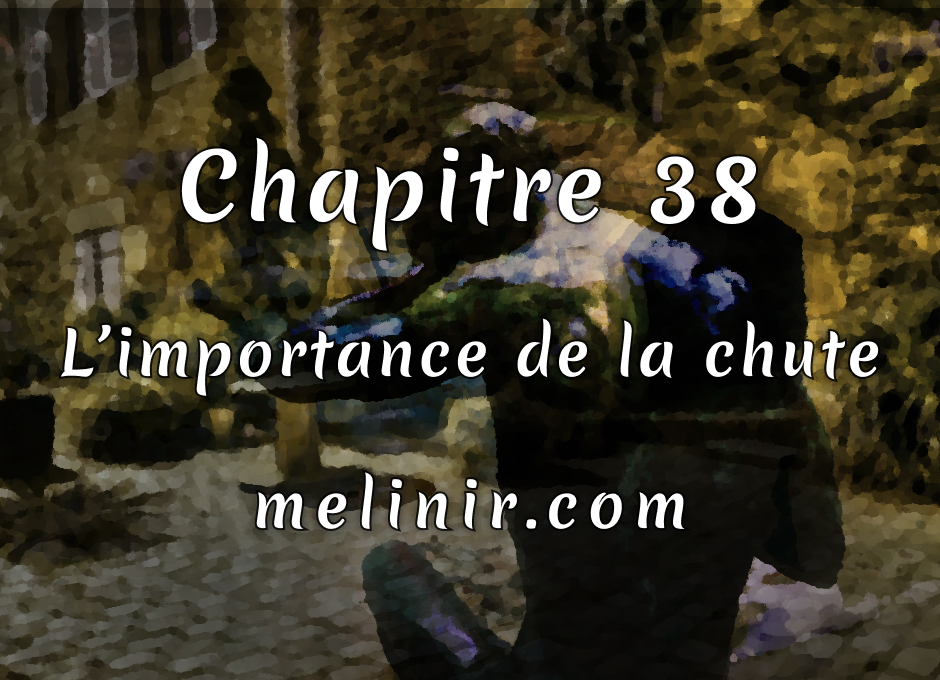 Melinir Tome 1 - Chapitre 38 - L'importance de la chute