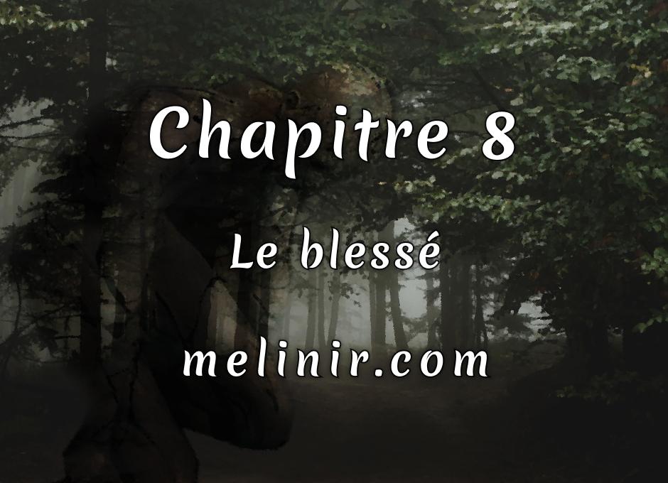Melinir Tome 1 - Chapitre 8 - Le blessé