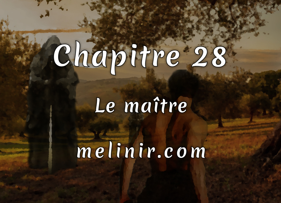 Melinir Tome 1 - Chapitre 28 - Le maître