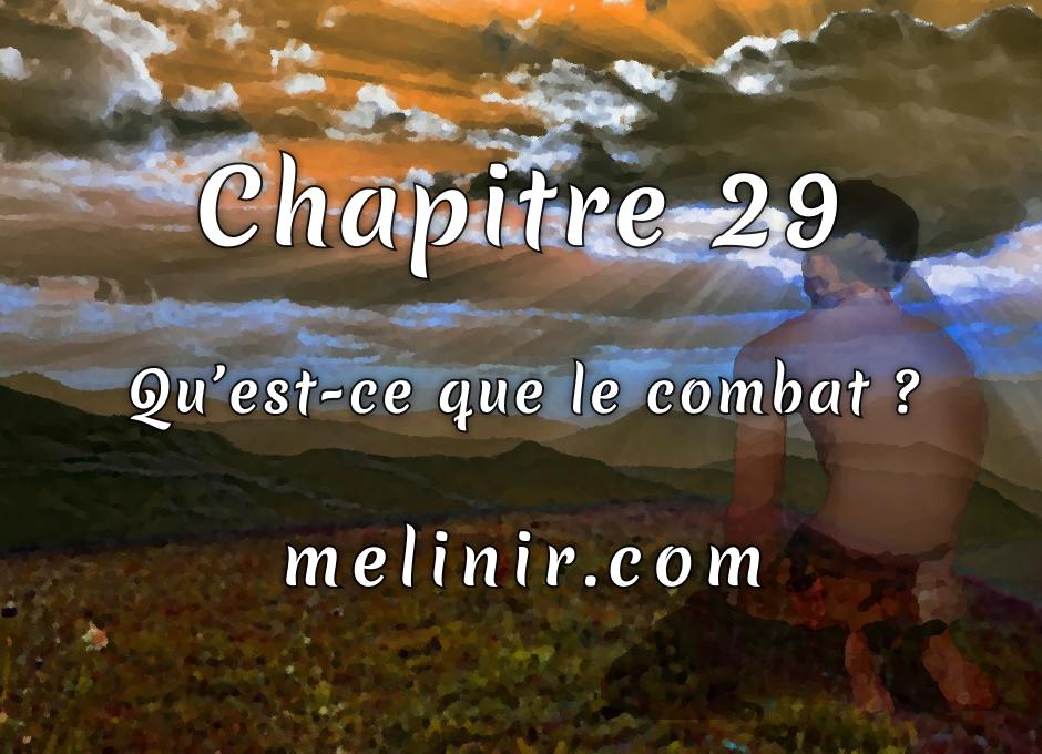 Melinir Tome 1 - Chapitre 29 - Qu'est-ce que le combat ?