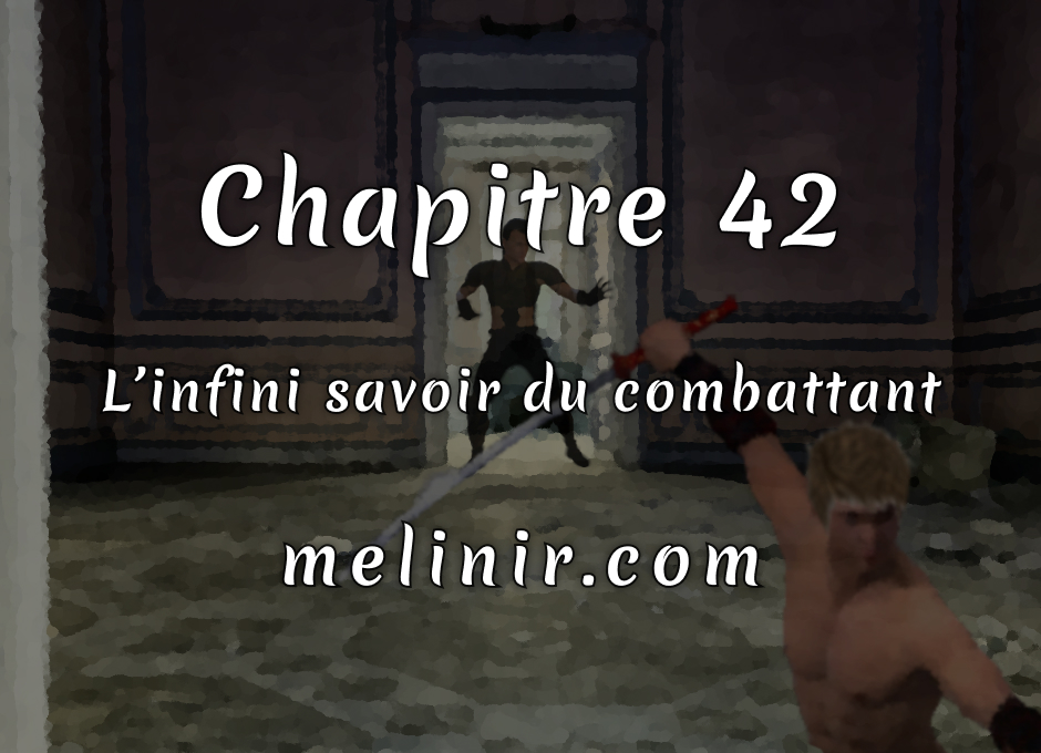 Melinir Tome 1 - Chapitre 42 - L'infini savoir du combattant